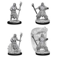 Dungeons & Dragons: Nolzur's - Nolzur's Marvelous Unpainted Minis: Water Genasi Male Druid