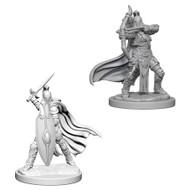 Pathfinder: Pathfinder Deep Cuts Unpainted Miniatures: Female Knights / Gray Maidens