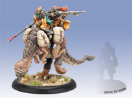 Hordes: Minions - Efaarit Scout Light Cavalry Solo