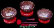 Tibetan Singing Bowl Set #191