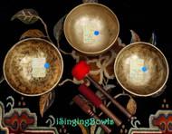 Tibetan Singing Bowl Set #42