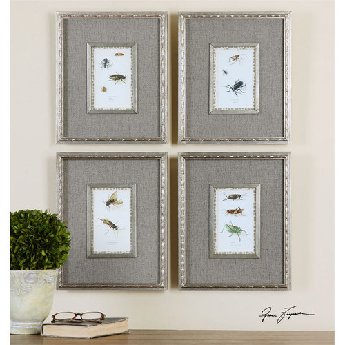 Insect Study Set of 4