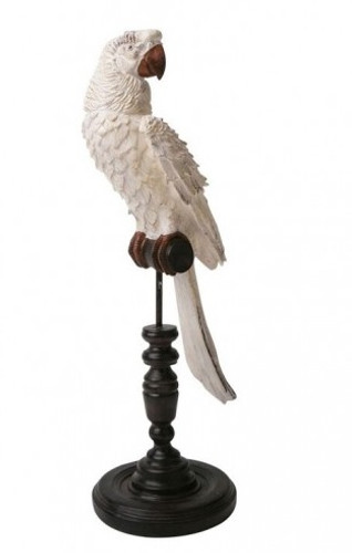 Ornamental Parrot - Blanc