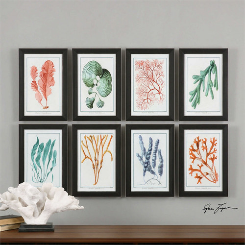 Colorful Algae Set/8 - Framed Artwork