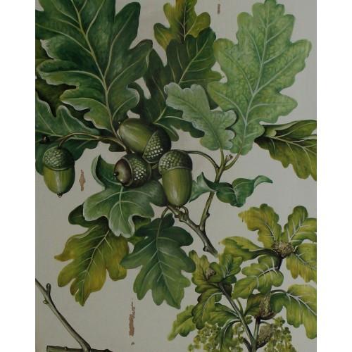 A483 Oak Leaves Artwork