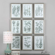 Herb Garden Set/9 - Framed Artwork a Prints Framed by Uttermost