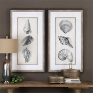 Antique Shells Set/2 - Framed Artwork a Prints Framed by Uttermost
