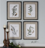 Butterfly Plants Set/4 - Framed Artwork a Prints Framed by Uttermost