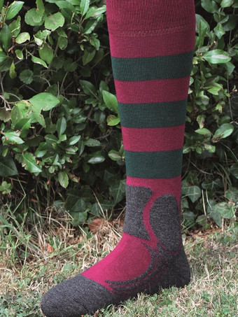Burgundy/green Stripe