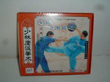 EAGLE SECT JIN GANG KICKS  VCD