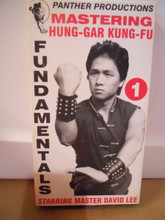 HUNG-GAR KUNG FU  W/ DAVID LEE (VHS VIDEO)