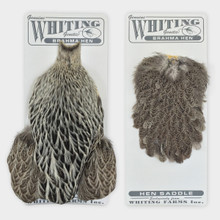 Whiting Brahma Hen Capes and Saddles