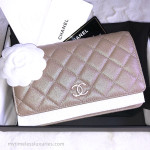 CHANEL 19S Iridescent Beige WOC Wallet on Chain Pearly CC #277xxxxx *New