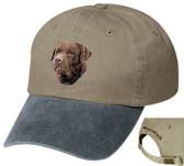 Chocolate Labrador Retriever Cap