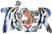 Tiger T-shirt - Imprinted Tiger