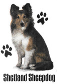 Shetland Sheepdog T-shirt - Imprinted Sheltie Sitting