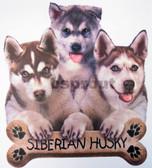 Siberian Husky T-shirt - Imprinted Three Huskies