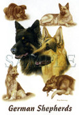 German Shepherd T-shirt - Imprinted German Shepherds