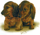 Dachshund T-shirt - Imprinted Dachshund Puppies