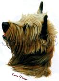 Cairn Terrier Head T-shirt - Imprinted Cairn Terrier