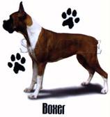 Boxer T-shirt - Imprinted Boxer