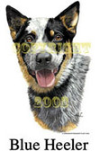 Australian Cattle Dog T-shirt - Imprinted Blue Heeler