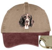Drentsche Patrijshound hat