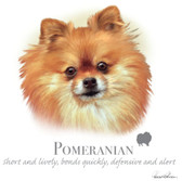 Pomeranian T-shirt - Imprinted Pomeranian Head