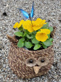 Big Owl Planter