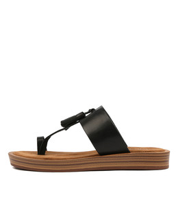 FESTUS Sandals in Black Leather