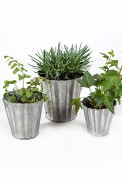 Set of Three Tin Pots