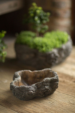 Cement Burled Bark Planter