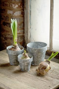Zinc Flower Pots