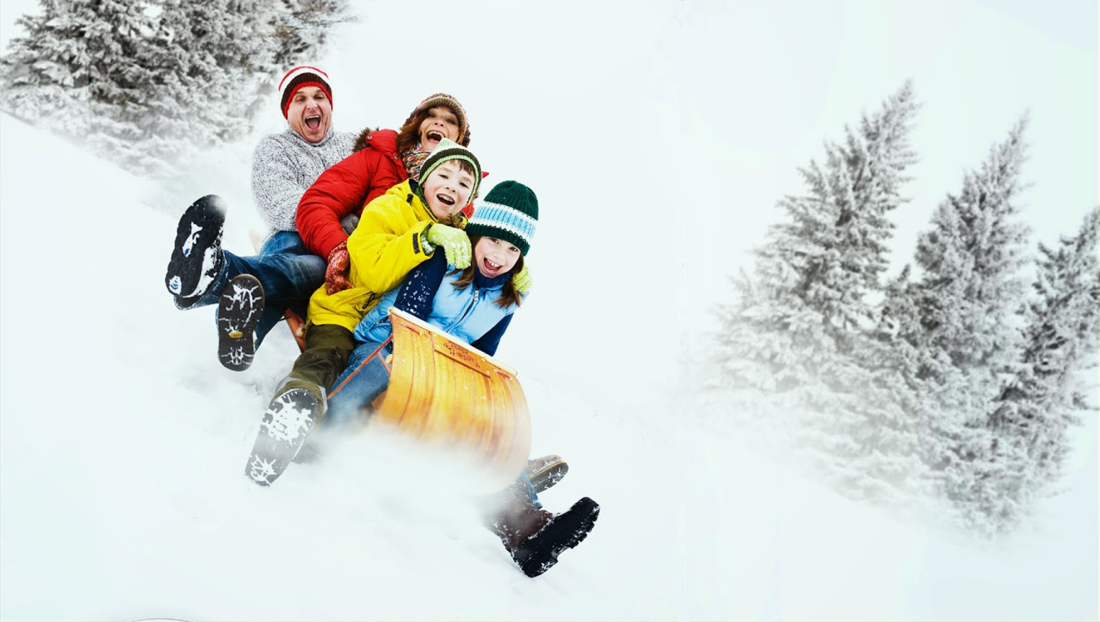 5 Ideas For Outdoor Family Outings On The Cheap
