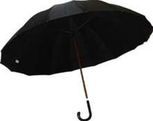 Doorman's Umbrella