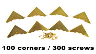 100pc. Shiny Gold Box Corners with Screws