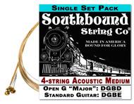 Acoustic Medium 4-String Cigar Box Guitar Strings - Open G/Standard Tuning - DGBD/DGBE