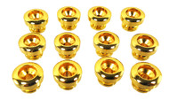 12pc. Gold Strap Buttons with Screws