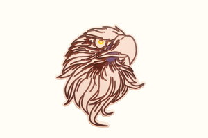 Eagle Head Wall Plaque