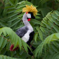 Grey Crowned Crane Plush Toy