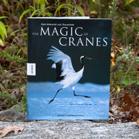 The Magic of Cranes
