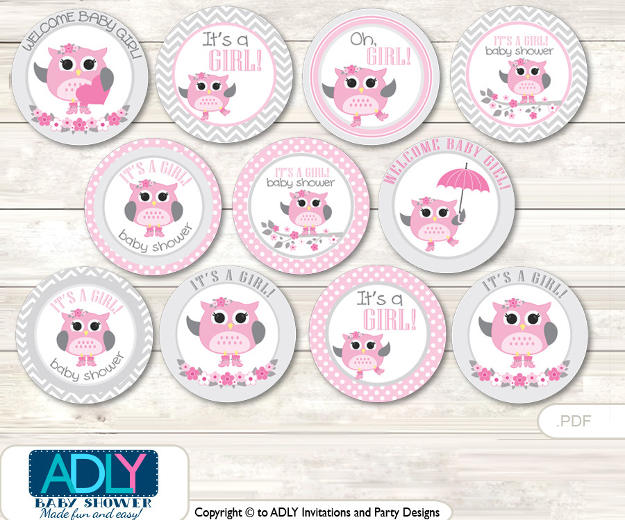 Baby Shower Spring Owl Cupcake Toppers Printable File For
