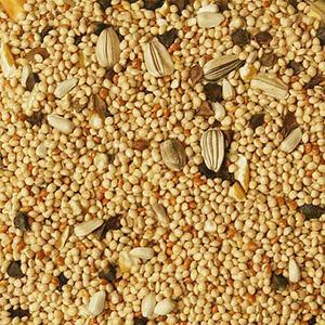 birds-delight-cockatiel-fancy-closeup-seed.jpg