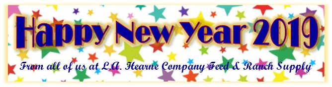 happy-new-year-2019-c-contact.jpg