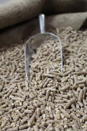 king-freedom-livestock-equineweb-pellets-close-up.jpg