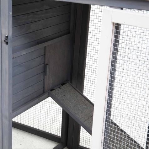 precision-pet-red-door-hen-house-ii-coming-mid-march-inside.jpg