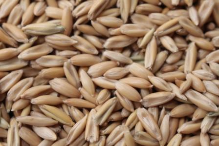 r-c-oats-king-brand-pic.jpg