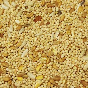 western-delight-volker-seed-factory-closeup-quail-and-dove-40-lb..jpg