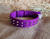 Dog Collar H Duty Nylon 22 inch Purple