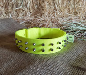 Dog Collar H Duty Nylon 20 in. Yellow  20 in. (Available in store only KC)